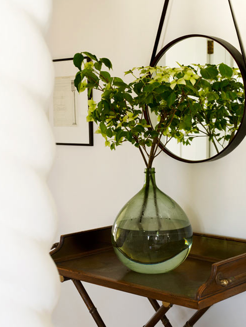 a rounded glass vase with healthy plants for good feng shui at home