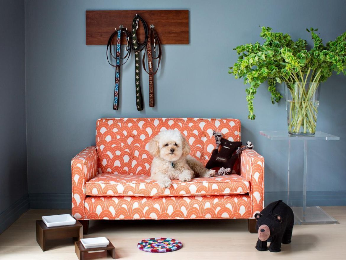 Video: Is It Possible to Keep a Clean House With Pets?