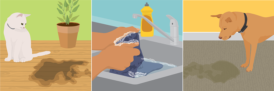 Infographic: Best Stain Removal Tricks