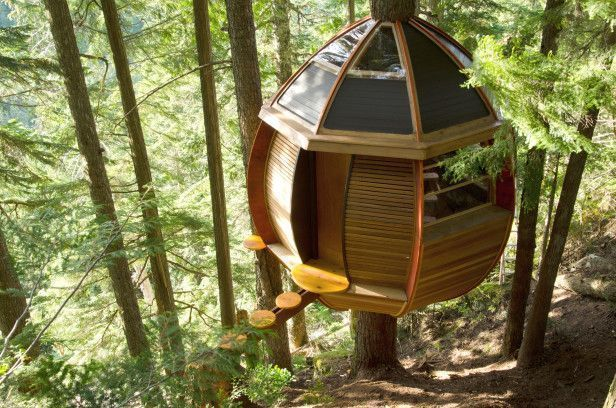 Inside the World's Coolest Treehouses