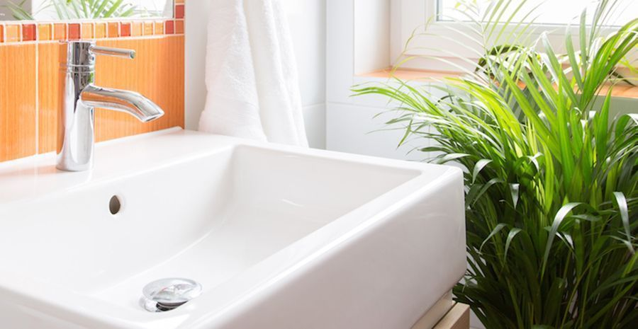 Mould Prevention Tips for your Home