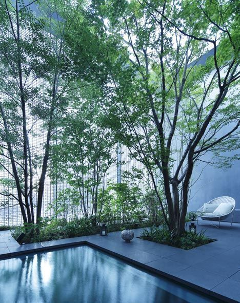 peaceful and zen luxurious indoor pool with lush greeneries in a glass house at Hiroshima, Japan