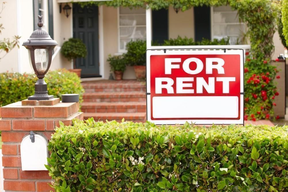 Easy Ways to Make Your Rental All Your Own